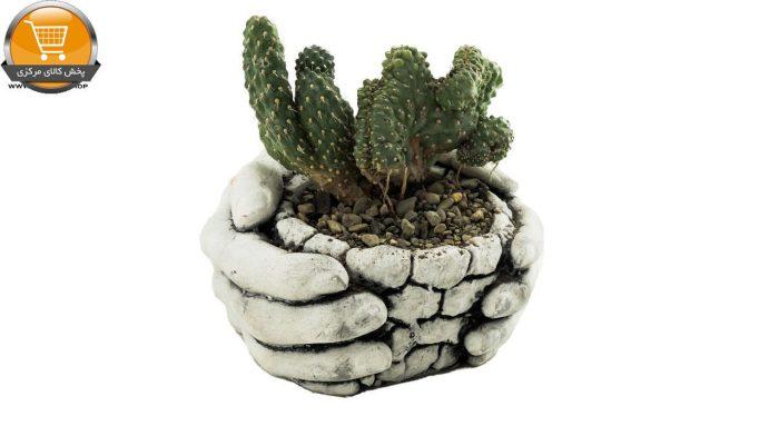 تیغ سکی دفورمه سایز 12 در گلدان سنگی | پخش کالای مرکزی