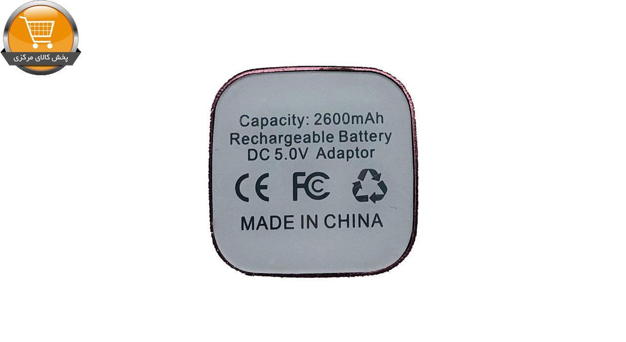 شارژر همراه دیتا کانکت مدل 8172 ظرفیت 2600 میلی آمپر ساعت | پخش کالای مرکزی